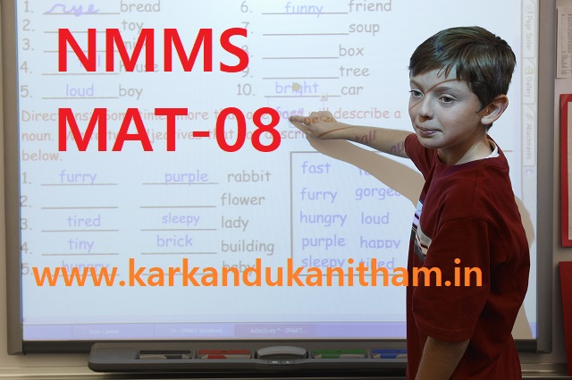 nmms exam question paper