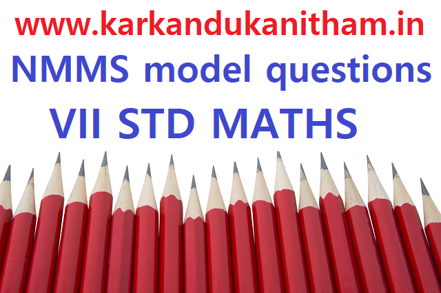 nmms question paper-03